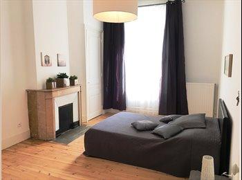 Appartager FR - Hypercentre appartement  T4 meublé entièrement rénové , Saint-Etienne - 380 € /Mois