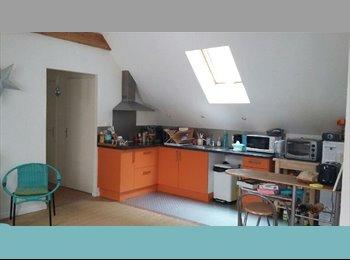 Appartager FR - Appartement colocation commerce hyper centre, Nantes - 390 € /Mois