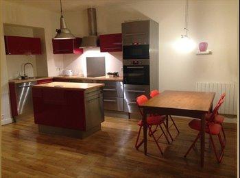 Appartager FR - appartement confortable et lumineux, Sainte-Foy-lès-Lyon - 400 € /Mois