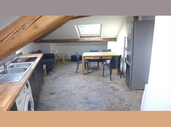 Appartager FR - Colocation de 3 personnes à 5 minutes du métro, dans un appartement neuf!, Oullins - 380 € /Mois