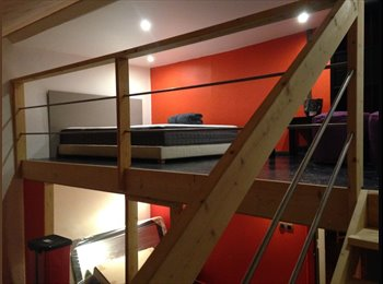 Appartager FR - Grande chambre avec mezzanine, La Mulatière - 590 € /Mois