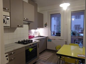 Appartager FR - A louer 1 chambre meublée, Strasbourg - 480 € /Mois
