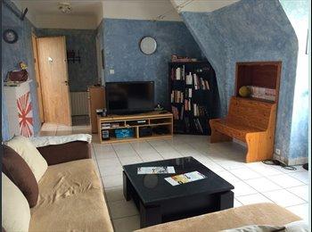 Appartager FR - 2 chambres a louer dans appartement de 83 metres carrés, Brest - 350 € /Mois