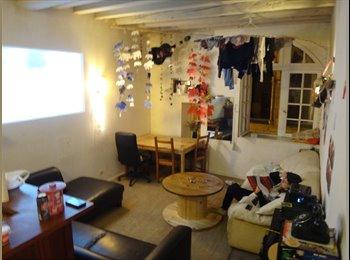 Appartager FR - Chambre dans une colocati, Bordeaux - 295 € /Mois