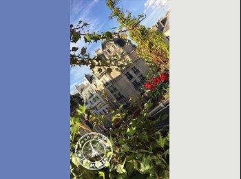 Appartager FR - Grande chambre meublée avec son balcon privatif, hypercentre Paris 1er arrondissement , Paris - Ile De France - 750 € /Mois