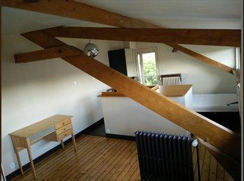 Appartager FR - Location Chambre meublée de 23m², Joinville-le-Pont - 550 € /Mois