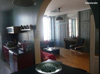Appartager FR - Super coloc à Masséna ! , Lyon - 500 € /Mois