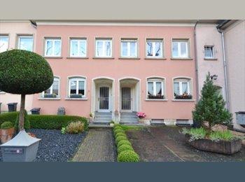 Appartager LU -  2 pièces avec 2 grands lits et deux bureaux  / salle de bain  privée dans maison coloc, Luxembourg - 625 € / Mois