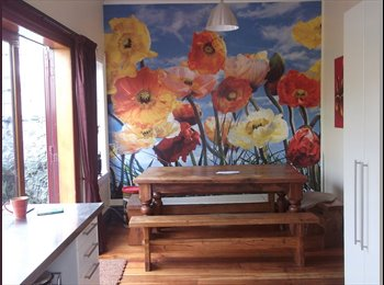 NZ - Furnished sleepout available, Wellington - $175 pw