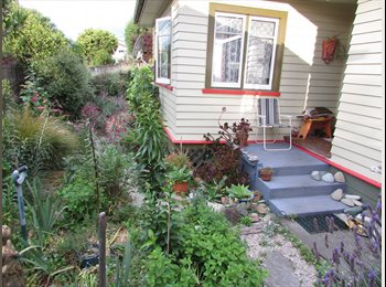 NZ - Room To Let, Nelson - $130 pw