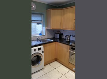 EasyRoommate UK - friendly house share liverpool, Wavertree - £320 pcm