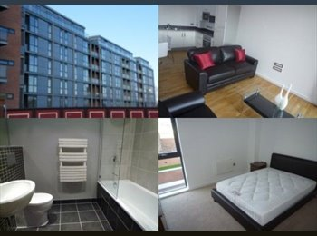 EasyRoommate UK - Large Double Room avail in Manchester City Centre, Ancoats - £495 pcm
