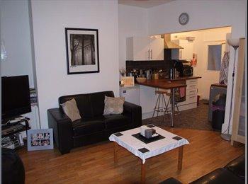 EasyRoommate UK - Big Bedrooms, End terrace near City Centre, Carlisle - £280 pcm