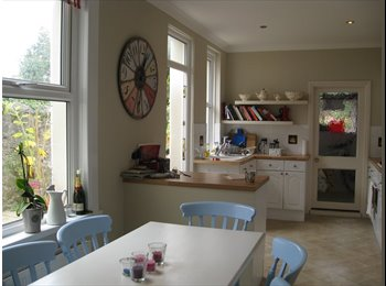 EasyRoommate UK - Large double bedroom in fully furnished, beautiful victorian house, Mannamead, Mannamead - £400 pcm