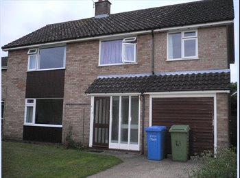 EasyRoommate UK - Rooms available!!!, Norwich - £300 pcm