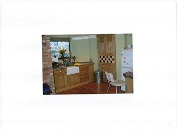EasyRoommate UK - Lovely 4 bed town house, Aylestone Park - £250 pcm