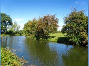 EasyRoommate UK - Room close to the river and Aylestone Meadow, Aylestone - £350 pcm