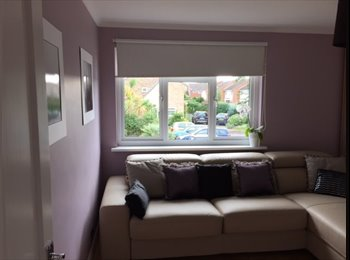 EasyRoommate UK - double room to let with a separate ensuite shower and water tap, Hanworth - £600 pcm