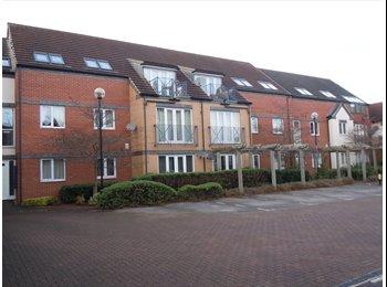 EasyRoommate UK - All female West Bridgford 4 bed flat, Hockley - £250 pcm