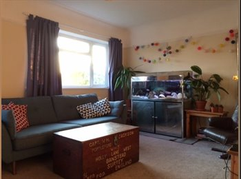 EasyRoommate UK - Lovely House Share 20 mins from Central Brighton with Parking, Shoreham-by-Sea - £600 pcm