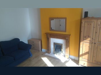 EasyRoommate UK - Lovely double furnished room with sofa and decorative fireplace near Mutley Plain for £360pcm., Mannamead - £360 pcm