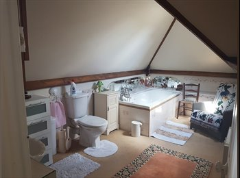 EasyRoommate UK - Lovely room good bus routes to UEA and N&N hospital , Norwich - £450 pcm