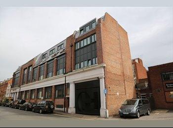 EasyRoommate UK - 44 Friar Lane Flat, Leicester - £368 pcm