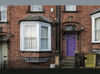 EasyRoommate UK - Room in shared house in Durham, Durham - £542 pcm