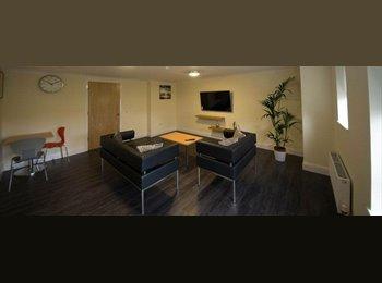 EasyRoommate UK - Craigie Student Accomodation, Ayr - £500 pcm