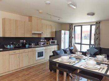 EasyRoommate UK - Europa student accommodation (Liverpool), Kensington - £516 pcm