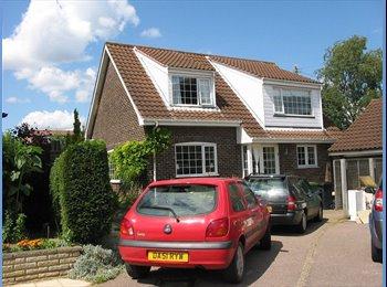 EasyRoommate UK - Single room in comfortable modern household, Norwich - £405 pcm