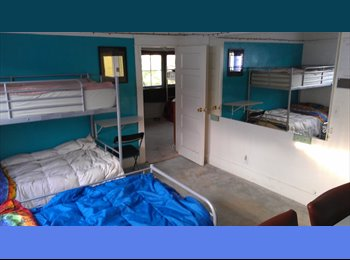 EasyRoommate US - Girls shared room. all incl. Free laundry/parking, MacArthur Park - $450 pm