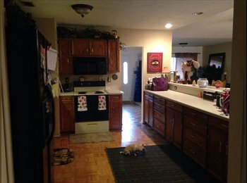 EasyRoommate US - House to share with professional female, The Colony - $800 pm