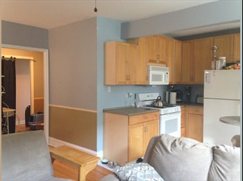 EasyRoommate US - Evanston Edge/Rogers Park room for rent, Rogers Park - $525 pm