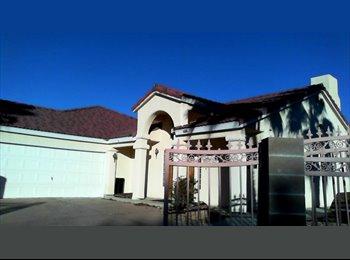 EasyRoommate US - FURNISH ROOM Warmsprings rd. & Bermuda rd/Windmill rd.  ON 1/2 ACRE, Silverado Ranch - $650 pm