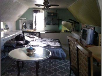 EasyRoommate US - spacious furnished bedroom, Norfolk - $550 pm