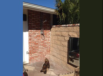 EasyRoommate US - Room with Private Courtyard/Outdoor Shower for Clean Quiet Professional Roommate, Carlsbad - $1,100 pm
