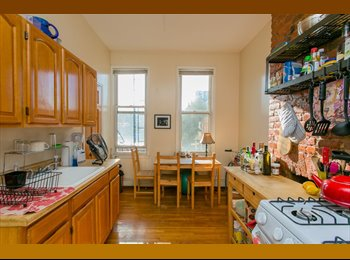 EasyRoommate US - High ceilings, cozy room with great subway access in Williamsburg, Williamsburg - $1,100 pm