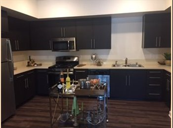 EasyRoommate US - Beautiful Brand New Apartement for Rent, lower Westside - $1,050 pm