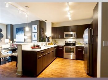 EasyRoommate US - Roommate, June move in, Central Austin! , Zilker - $1,150 pm