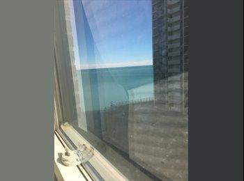 EasyRoommate US - Edgewater best offer , Edgewater Beach - $3,000 pm