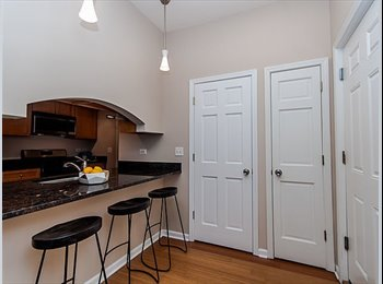 EasyRoommate US - Looking for someone to take over my lease in Logan Square, Logan Square - $800 pm
