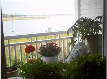 EasyRoommate US - Beautiful room by the water!, Hampton - $650 pm
