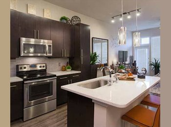 EasyRoommate US - Room at South Shore District Apartments on the lake, East Cesar Chavez - $1,100 pm