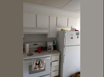 EasyRoommate US - Mature female roommate wanted, New Port Richey - $500 pm