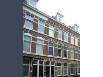 EasyKamer NL - loft apartment 50m2 furnished, Den Haag - € 750 p.m.