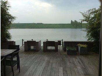 EasyKamer NL - Rustige, mooie kamer, dicht bij Utrecht, Utrecht - € 300 p.m.