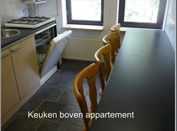 EasyKamer NL - gemeubileerde zolderkamer, Maastricht - € 475 p.m.