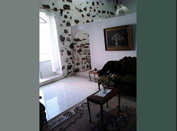 CompartoDepa MX - Rento bonito departamento-estudio, 1 recamara, amueblado en Gto, gto, Guanajuato - MX$4,500 por mes
