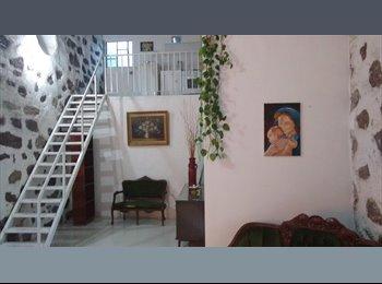 CompartoDepa MX - Rento depto-estudio amueblado 1 recámara en gto, Guanajuato - MX$4,500 por mes